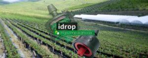 irrigazione con gocciolatori